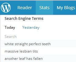 I haven't actually written anything about massive lesbian tits, but you're right internet viewers, I should.